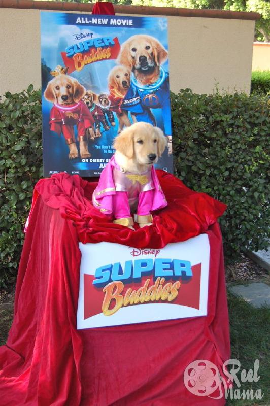 Rosebud starring in Super Buddies