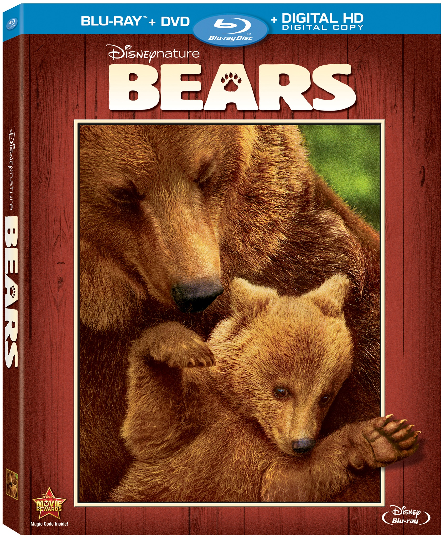 Help your kids learn all about BEARS with Disneynature [Blu Ray review + activity sheets]