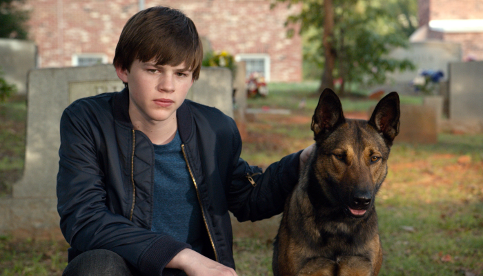 Geetha's what to watch: Max the dog movie, Ted 2, and Escobar Paradise Lost
