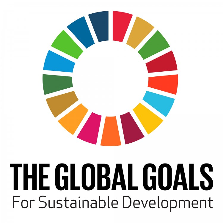 The Global Goals for Sustainable Development at the UN Sustainable Development Summit 2015