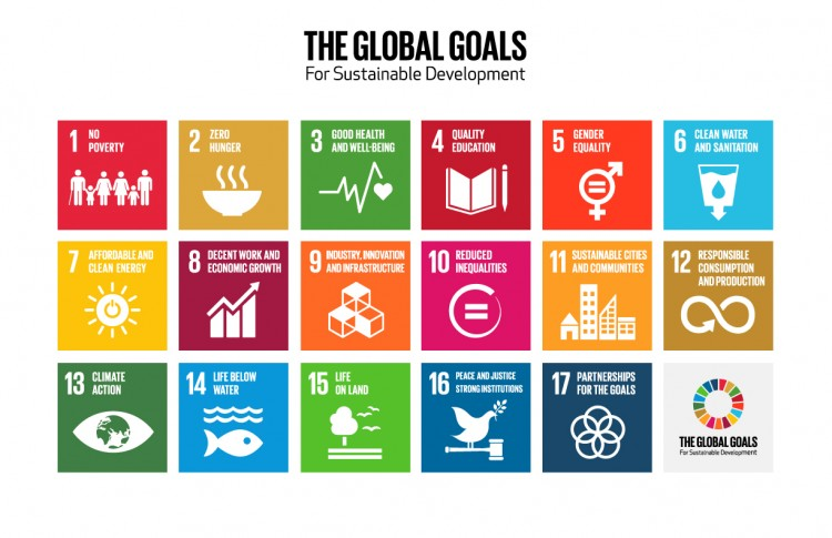 The 17 Global Goals for Sustainable Development at the UN Sustainable Development Summit 2015