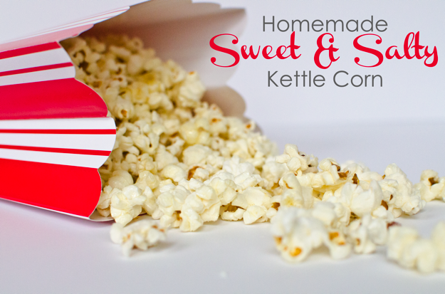 Sweet and salty kettle corn recipe from Really Are You Serious?