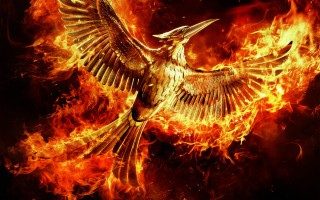 Geetha's What To Watch this weekend: Mockingjay Part 2, The Secret In Their Eyes, and Spotlight