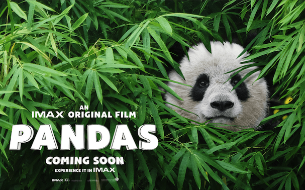 Pandas movie poster, a 2018 IMAX nature documentary for kids