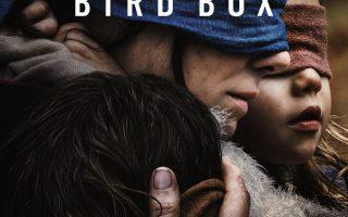 Bird Box on Netflix stars Sandra Bullock. It's a psychological science fiction thriller.