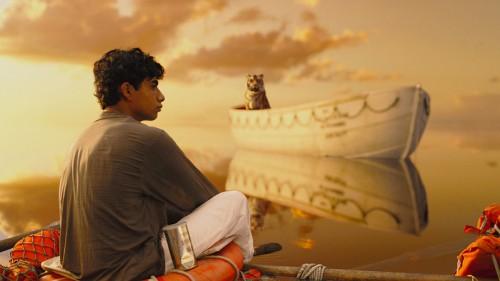 Bengal Tiger, India, Yann Martel, Ang Lee, Life of Pi Image, Life of Pi Picture, Life of Pi Production Still, Suraj Sharma, Star of Life of Pi