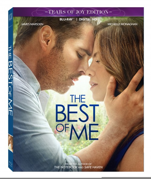 The Best of Me is a romantic pick by Nicholas Sparks for your date night in ~ James Marsden and Michelle Monaghan