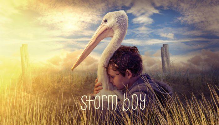 Storm Boy movie poster